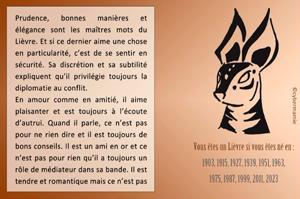 04-Lièvre