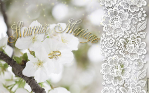 12-Fleurs blanches