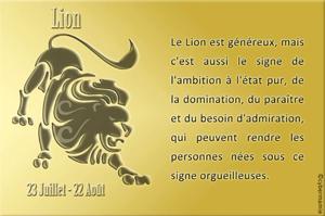 05-Lion
