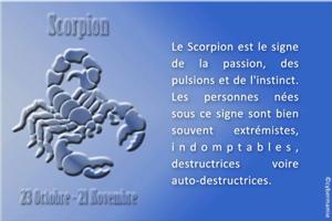 08-Scorpion