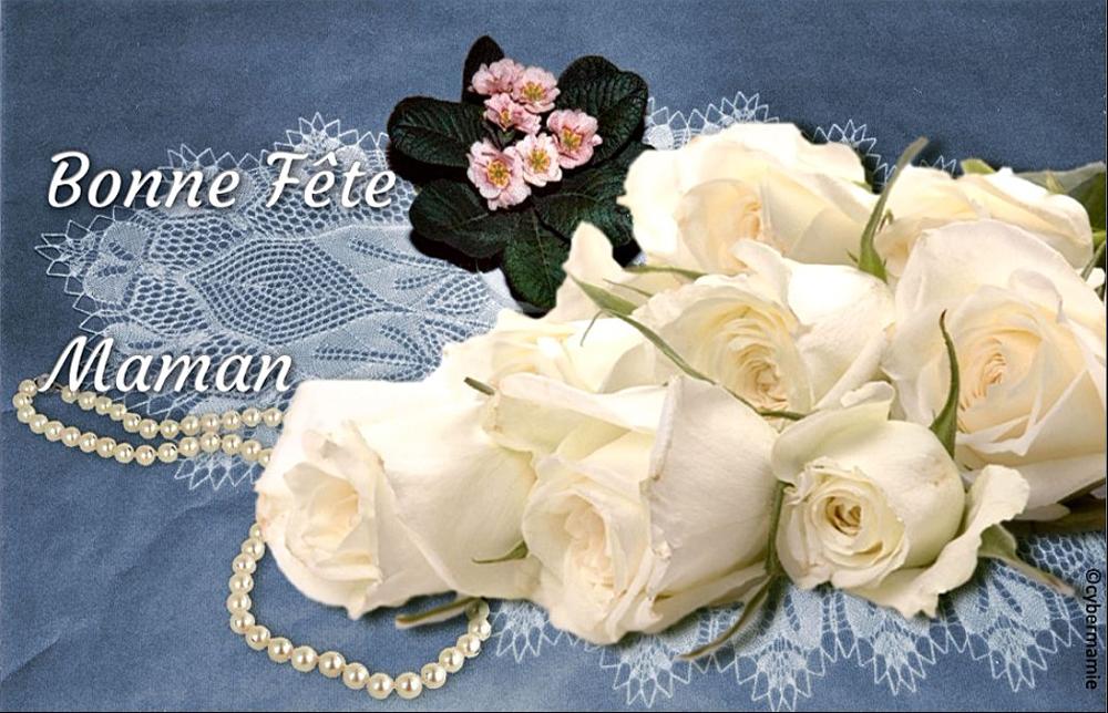 11 - Roses blanches (fond bleu)