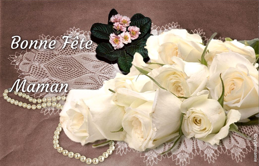 11 - Robes blanches (fond rose)