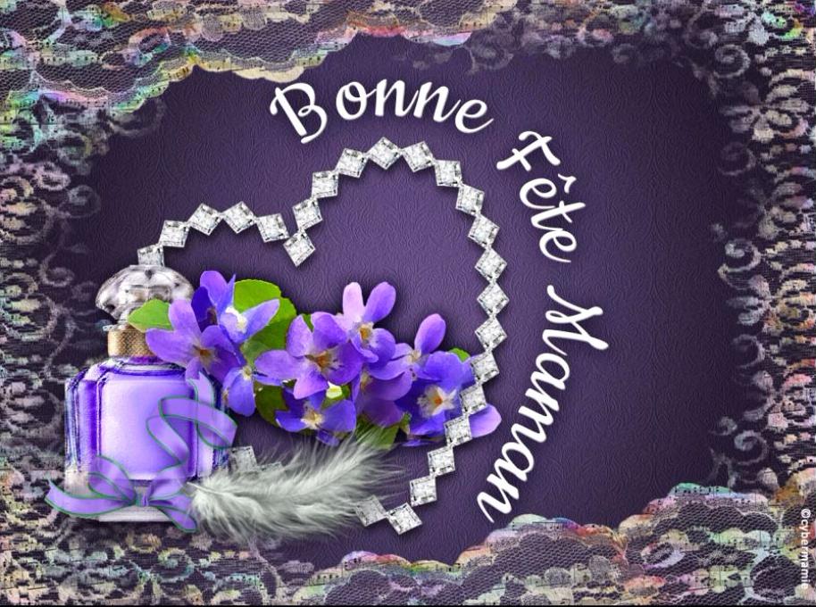 12 - Violettes