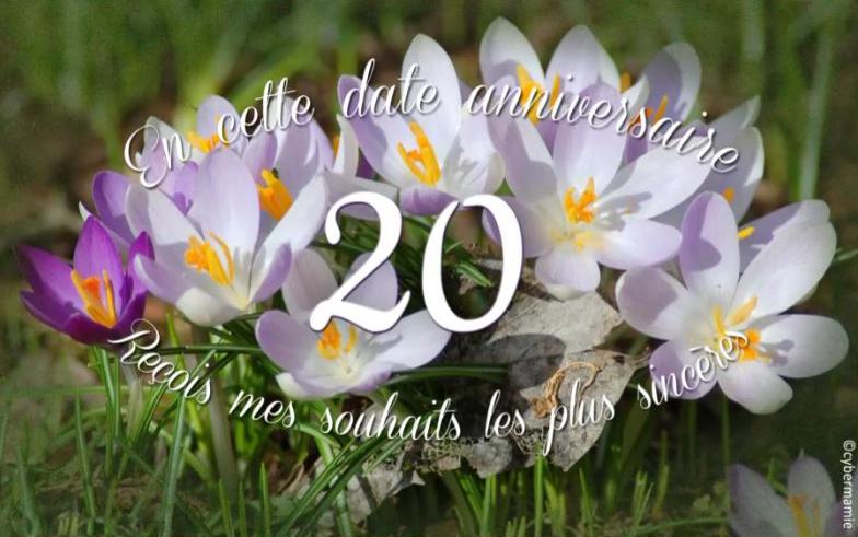 20 - Diapo fleurs