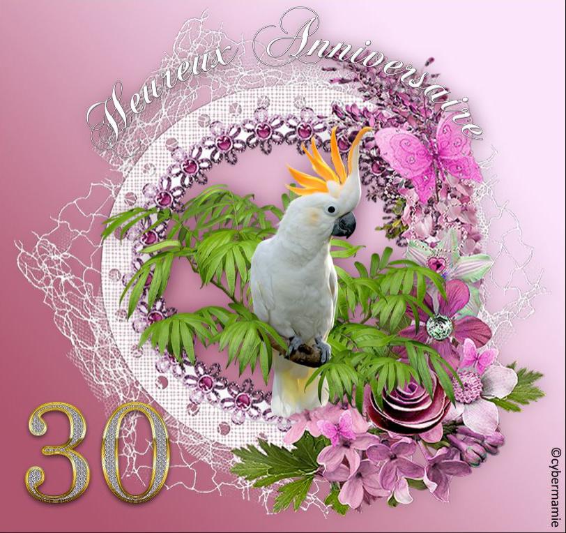 30 - Fleuri rose