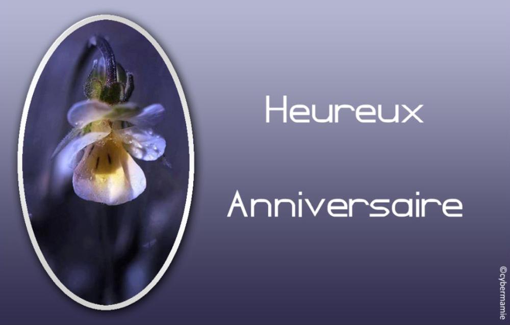 11 - Fleur bleue