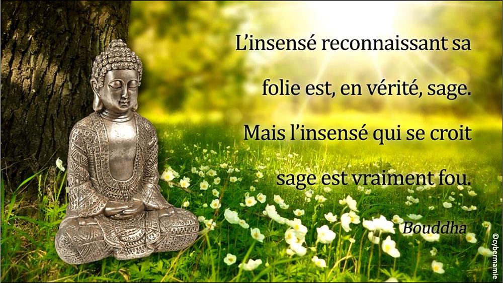 15 - Bouddha
