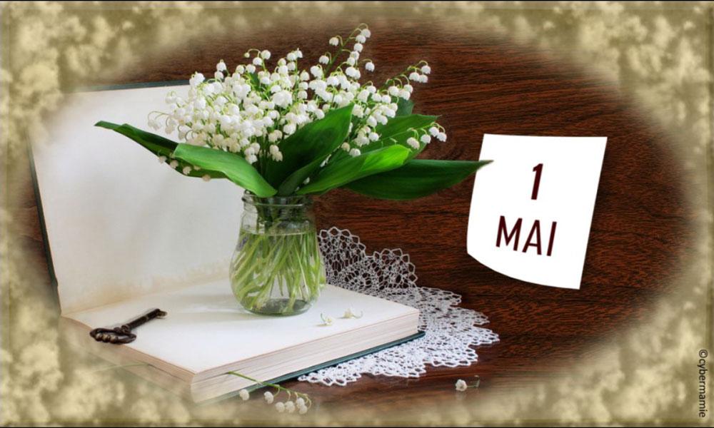 11 - Livre et bouquet